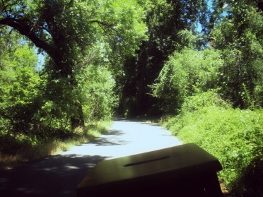Bidwell Park by bicycle