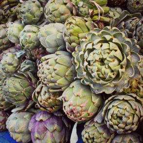 fresh and locally grown artichokes at the Thursday Night Market spring 2013